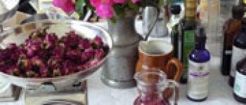 Atelier herboristerie - Copie Morlaix