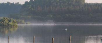Visite animée - Le Domaine de Careil, un havre de paix dans le couloir migratoire des oiseaux Iffendic