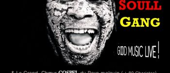 Pi Djob & Afro Soull Gang Saint-Coulomb