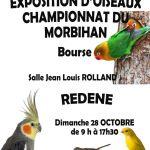 Bourse et exposition d\oiseaux Rédené