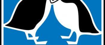 Sortie LPO : La face cachée des goélands, les oiseaux de bord de mer vus autrement Saint-Coulomb