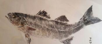 Exposition Gyotaku - Empreintes de Poissons Lamballe
