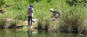 Les pieds dans la mare Jugon-les-Lacs - Commune nouvelle