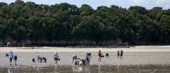 Sortie demi-journée pêche à pied aux Ebihens Saint-Jacut-de-la-Mer