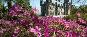 Trévarez en Rhododendron Saint-Goazec