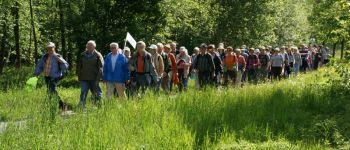 Randonnée : Circuit du bois de Coz Salou Gouarec