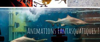 Animations gratuites au Grand Aquarium Saint-Malo