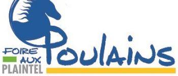 Foire aux Poulains Plaintel