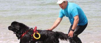 Concours régional de chiens sauveteurs en mer Douarnenez