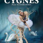 Le Lac des Cygnes La Selle-en-Luitré