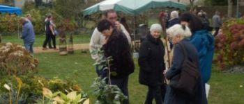 Marché aux plantes et aux articles de jardins Binic-Étables-sur-Mer