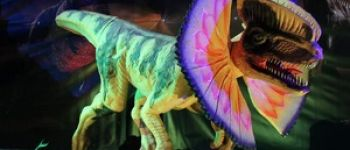 Exposition sur le monde des dinosaures Dinan