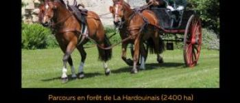 Rallye d\attelage de tradition Saint-Launeuc