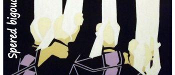 Exposition peintures Dany Borvon Île-Tudy