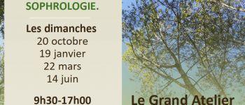 Grand Atelier - Bien-être en pleine Nature en Forêt de Villecartier Bazouges-la-Pérouse