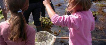 Balade Nature : Au Royaume de \Soizic la bernique et Norbert le crabe vert \ Fouesnant