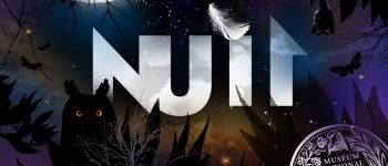 Exposition - Nuit Mellac