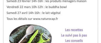 Atelier cuisine NaturoCap : le lait végétal Pont-Croix