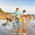 Coquillages & crustacés, secrets de la marée basse Plouezoch