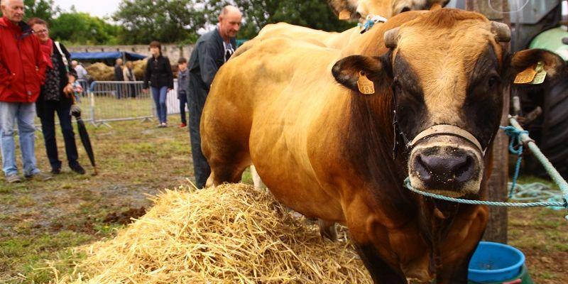 Comice agricole du Pays Bigouden