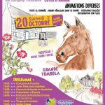 Foire aux chevaux à Kérien Kerien