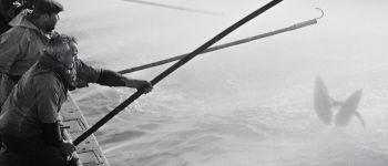 Exposition \La pêche au thon à l\appât vivant\ - Jean-Paul Mathelier. Plobannalec-Lesconil
