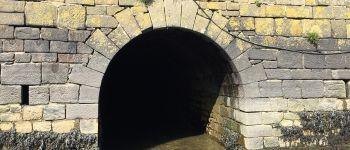 Découverte du ponceau ou aqueduc sous le quai du port à la conserverie Le Faou