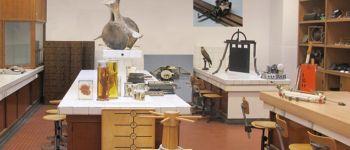 Visite du Cabinet de curiosité Brest
