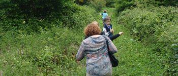 Balade en forêt de Carnoët Quimperlé