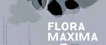 Exposition Flora Maxima Bignan