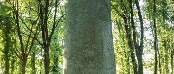 Journée des mégalithes des Landes de Lanvaux Moustoir-Ac