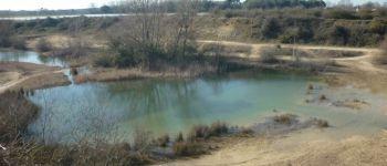 Sortie nature : faune et flore des carrières Arthon en retz