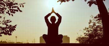 Hatha yoga Plaine Haute