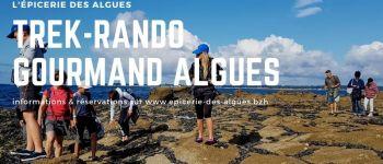 Randonnée gourmande autour des algues à névez Névez