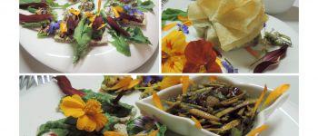 Atelier cuisine vivante : Osez les algues Nantes