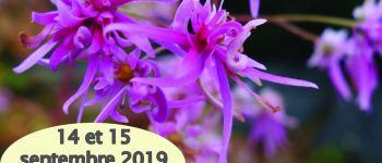 Les Journées des plantes de Guerlesquin Guerlesquin