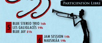 Festival de jam en jazz Callac
