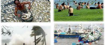 Les lundis de la mer : les effets du changement global sur les socio-écosystèmes marins : vulnérabilité, adaptation et résilience Lorient