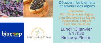 Cuisine aux algues : Tartare et Houmous Plestin-les-Grèves