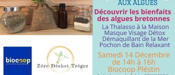 Cosmétique aux Algues : Thalasso, Masque Visage et Démaquillant Plestin-les-Grèves