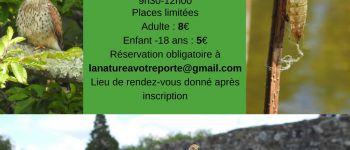 Découverte de la biodiversité urbaine de Dinan et ses écosystèmes miniatures Dinan